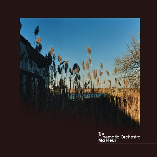 the-cinematic-orchestra